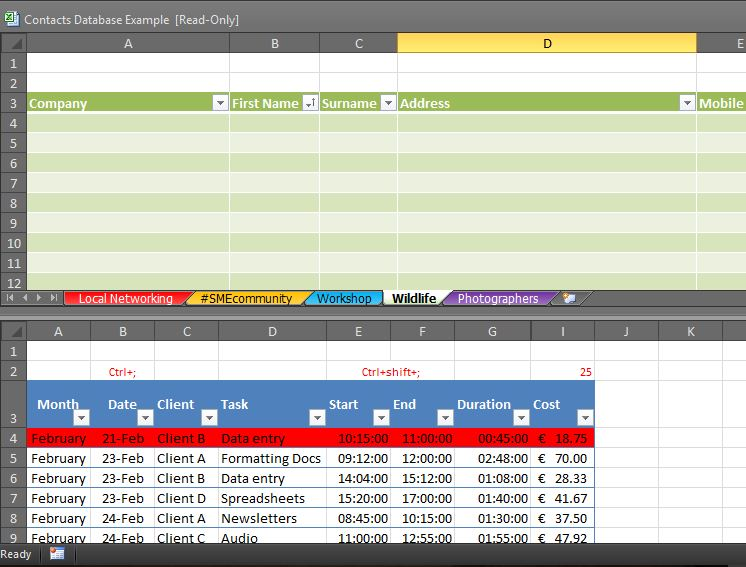 how to get two excel spreadsheets side by side